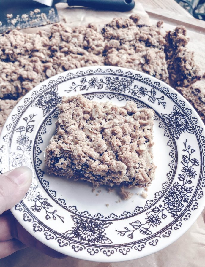 oat bars | fig